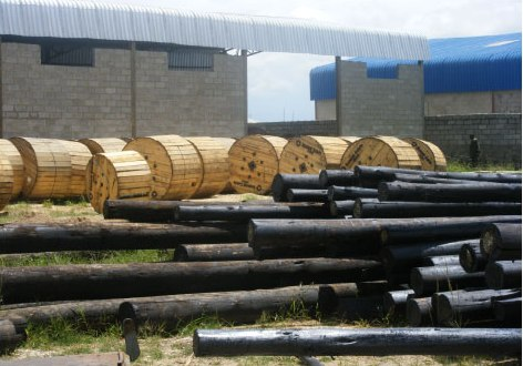 Supply of Wooden Poles